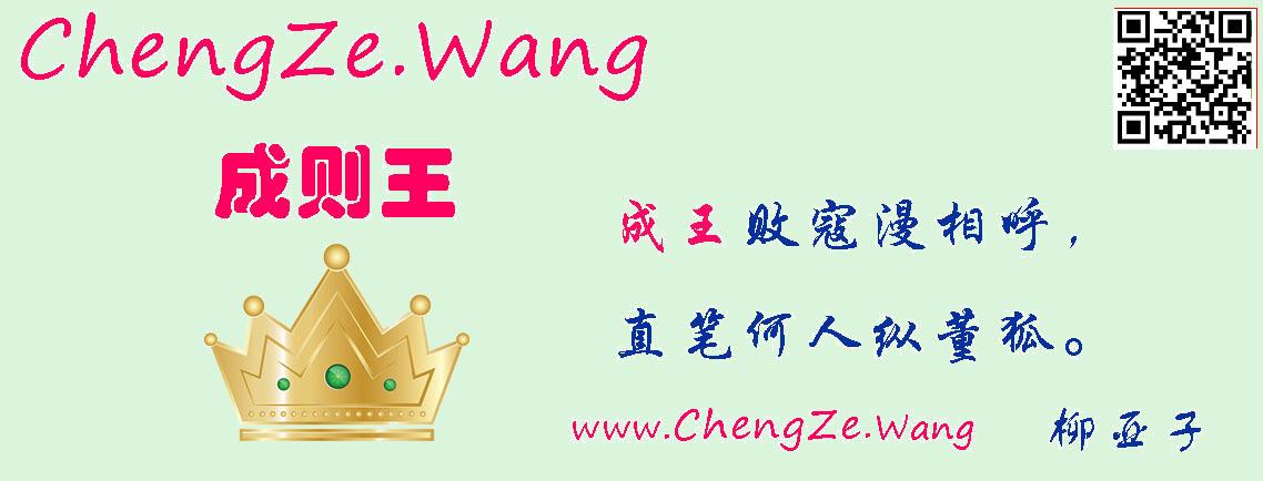成则网络 chengze.wang——【域名:网上一块地】【域润:土地价值升值】——九弟新媒体设计咨询有限公司